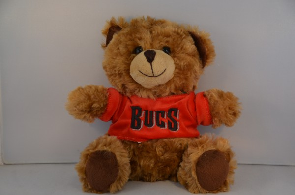 Tampa Bay Buccaneers Bear