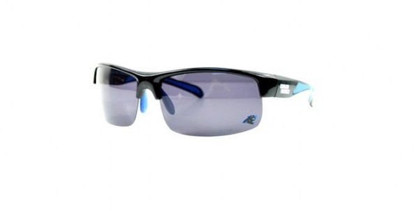 NFL Team Sunglass No Frame Panthers
